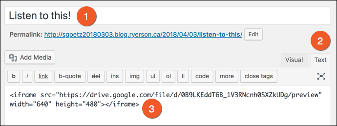 The embed code pasted into blog post